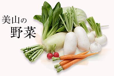 美山の野菜